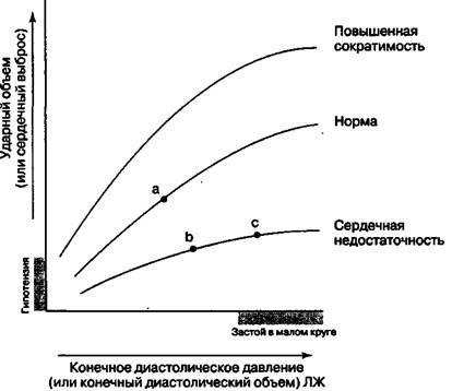 Компенсаторні механізми