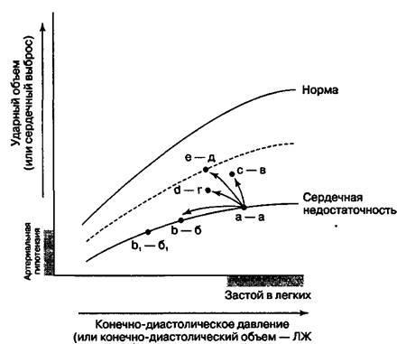 Препарати інотропної дії