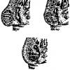 Тератоми крижово-куприкової області