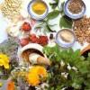 Трави для схуднення: легкий спосіб