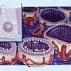 Основний ефект гормонів щитовидної залози