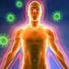 Штучний і природний імунітет