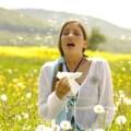 Алергія на пилок. Сінна лихоманка