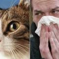 Алергія на тварин