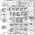 Етіологія