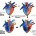 Серце - насос і перетин шляхів