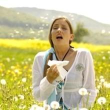 Алергія на пилок