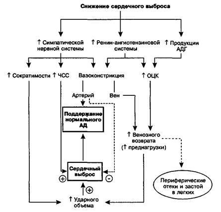 Нейрогормональна активація