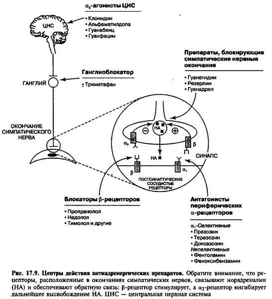 Антиадренергічні препарати