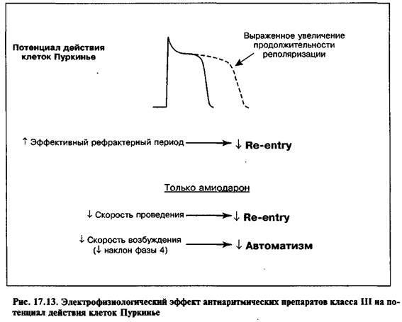 Антиаритмічні препарати III класу