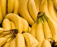 Банан загострений і банан бальбізіана