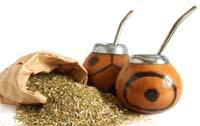 Парагвайський чай, або мате